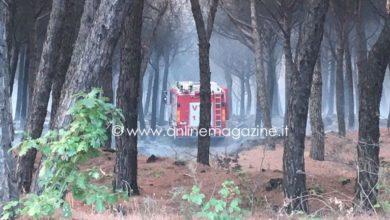 Photo of Inchiesta incendio Vesuvio, sospeso dirigente comunale