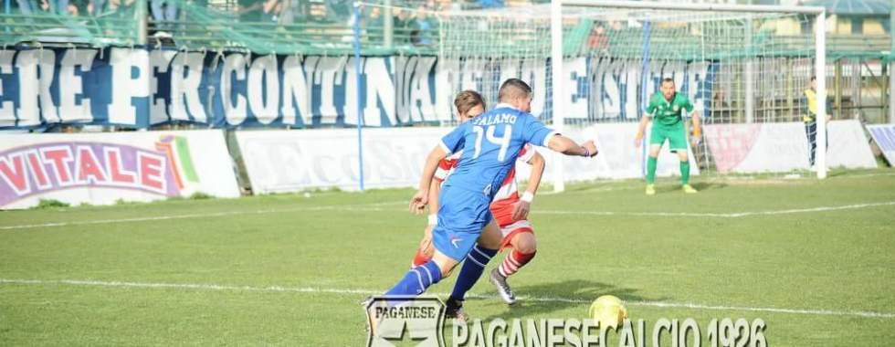 Photo of Paganese, oggi riprendono gli allenamenti. Talamo squalificato due turni dal Giudice Sportivo
