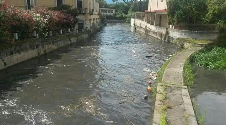 Photo of Caserta, liquami zootecnici versati in un canale di bonifica