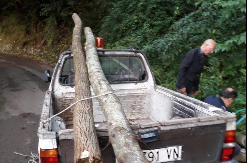 Photo of Castellammare. E' caccia al gruppo di ragazzi scoperto a tagliare legna sui boschi
