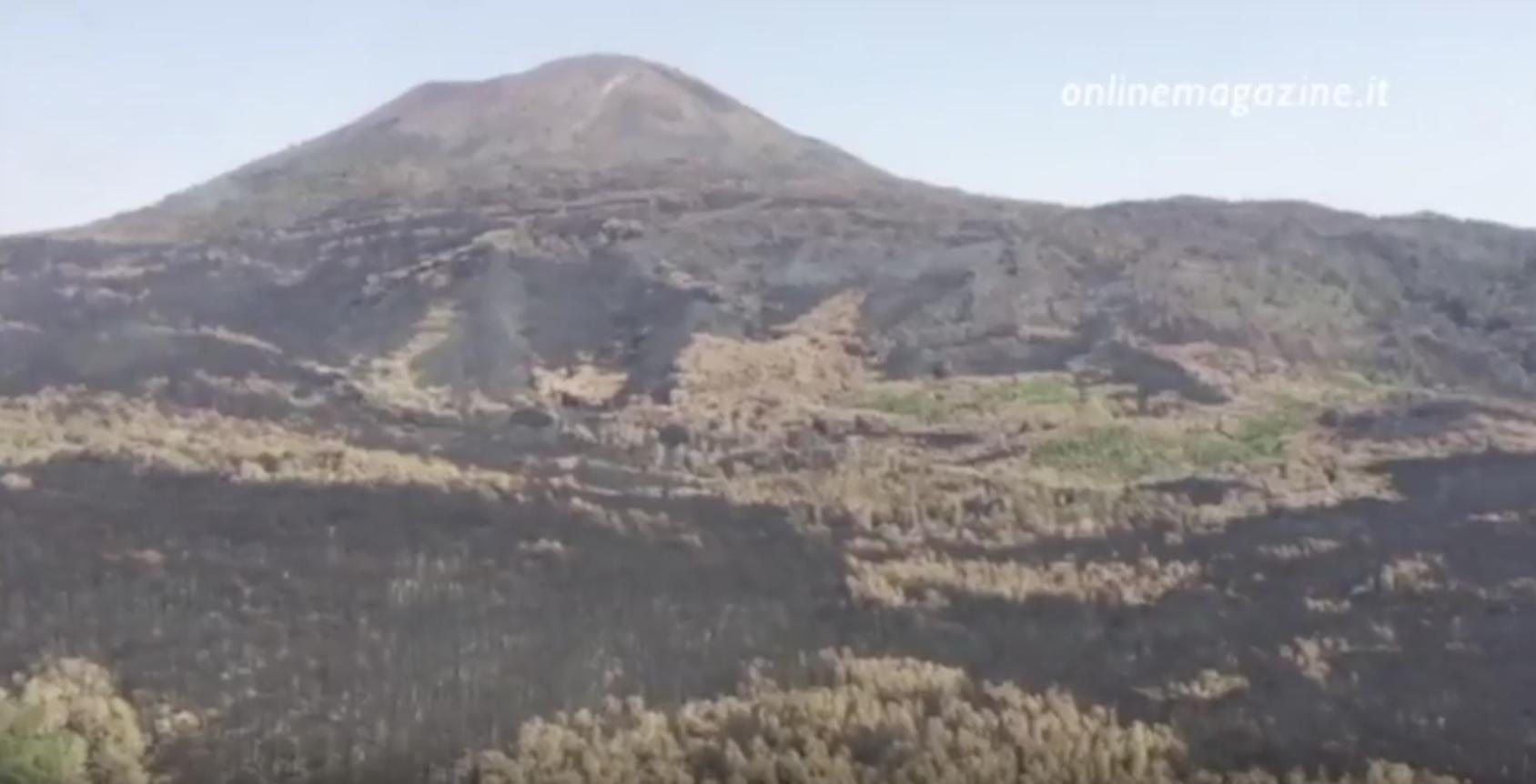Photo of Vesuvio, in calo gli incendi nel 2018
