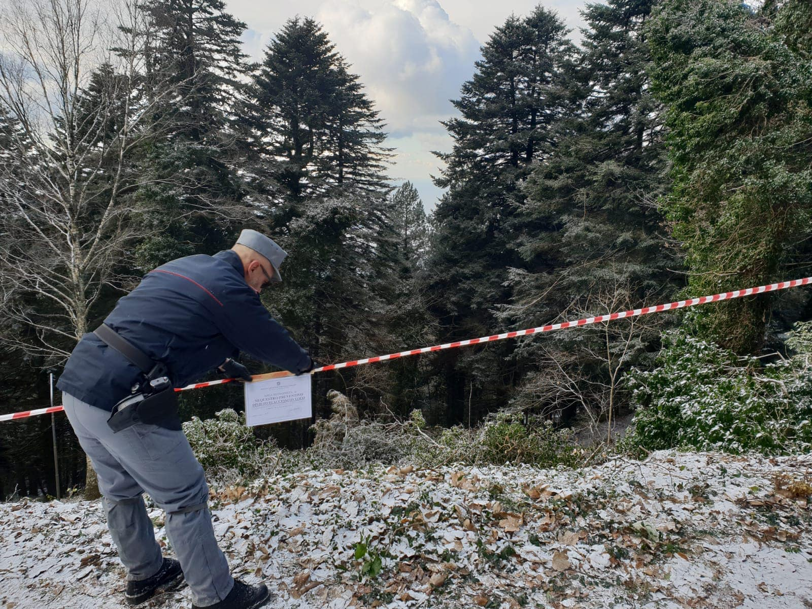 Photo of Taglio di alberi sul Faito, individuata la ditta responsabile del taglio