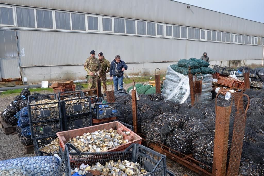Photo of Smaltimento illecito di rifiuti: controlli straordinari dell'Esercito, Carabinieri, Polizia e Guardia di Finanza tra Napoli e Caserta