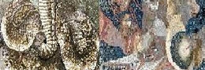Photo of Pompei: su Instagram nuovi mosaici degli Scavi non visitabili