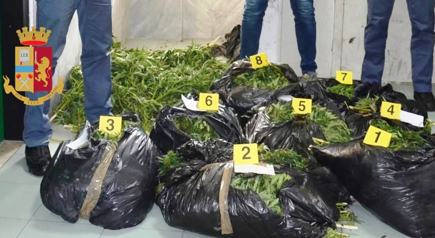Photo of Torre Annunziata. Polizia sequestra 56 chili di canapa indiana: arrestati anche due giovani