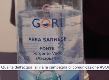 SORSI-GORI